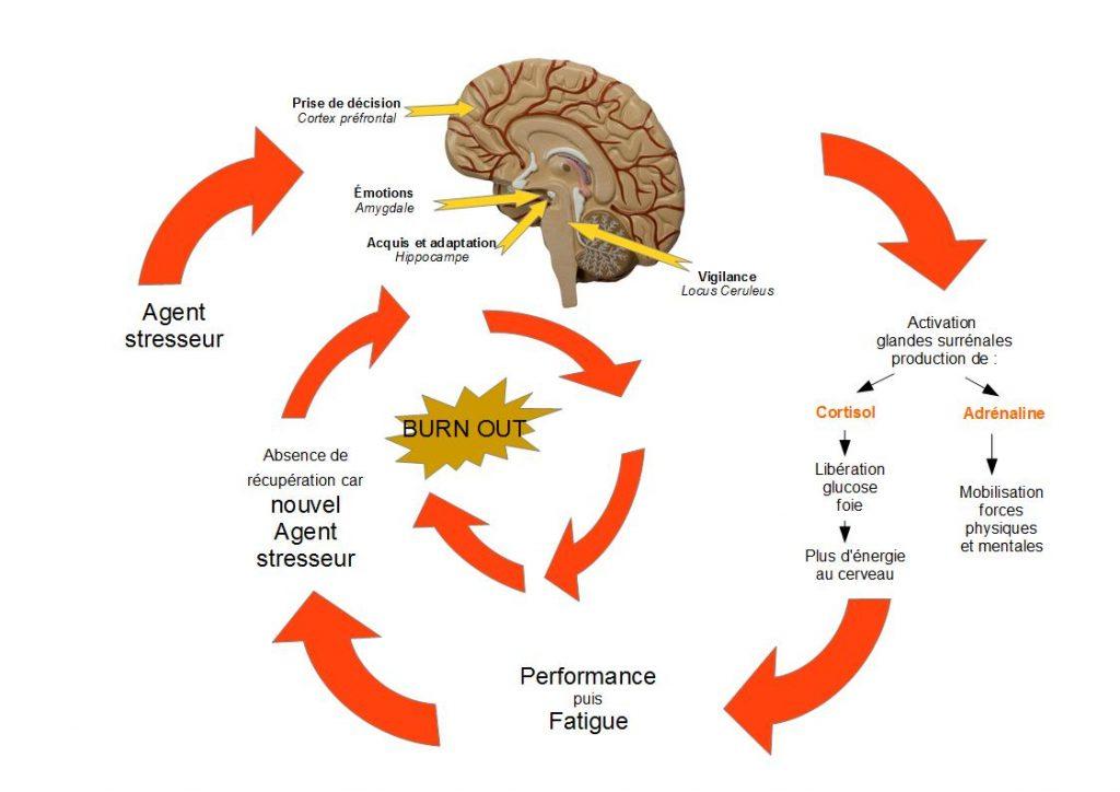 circuit-stress